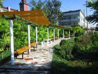 道路绿化设计原则