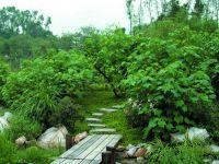 环保园林绿化